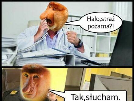 Kiedy lekarze potrzebują pomocy