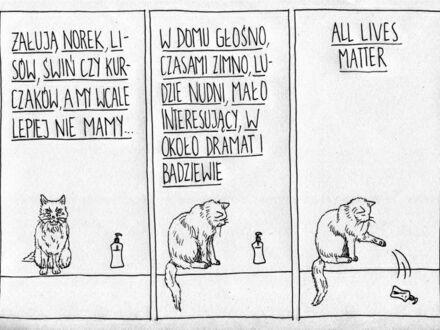 Kot poprawny politycznie
