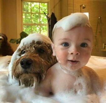 Wspólna kąpiel
