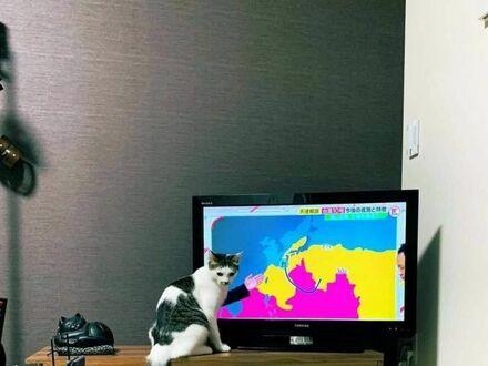 Nowy prezenter pogody