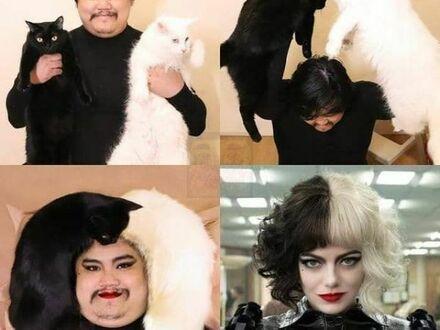 Budżetowa Cruella