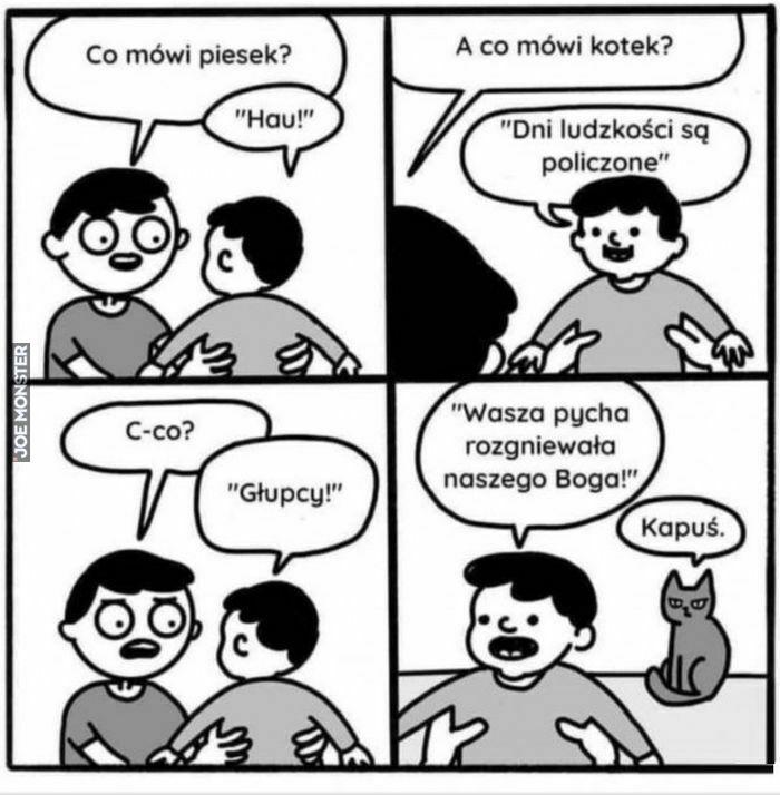 co mówi piesek hau a co mówi kotek