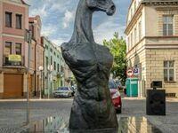Superprzystojny koń z Walony (z Konina)