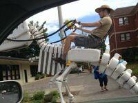 Jeździec dinozaura