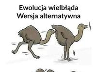 Ewolucja to prawda