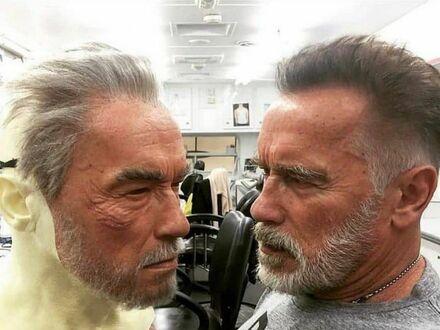 Arnold patrzący na Arnolda