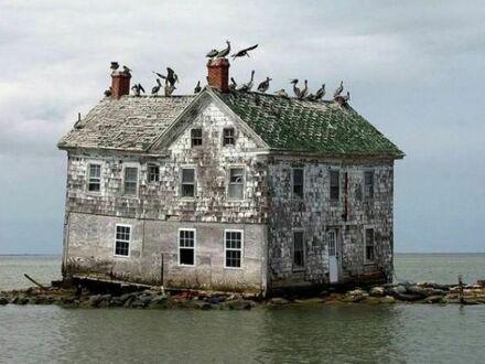 Ostatni pozostały dom na Holland Island, Maryland