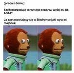 Homework, bo wirus