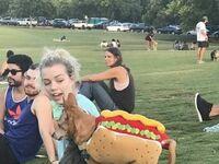 Niegrzeczny hot-dog