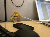 Pomocny żółw ninja