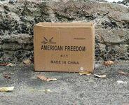 Prawda o amerykańskiej wolności