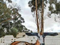 Trójwymiarowa gazela