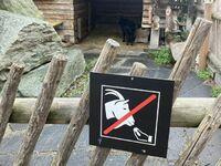 Zakaz mówienia po włosku do kóz