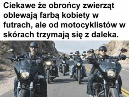 Dlaczego lepiej nie zadzierać z motocyklistami