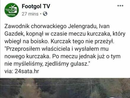Kurczak ofiarą futbolu