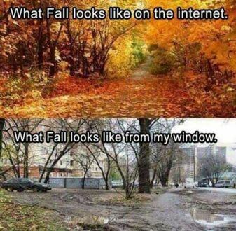 Jak jesień wygląda w internecie, a jak za moim oknem