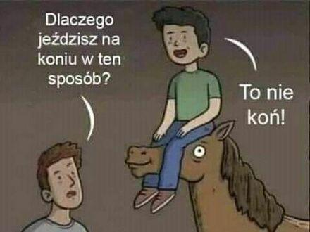 Lepszy od konia