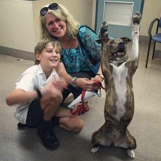 Pies ze schroniska nie może powstrzymać ekscytacji po tym jak został adoptowany