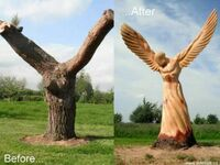 Cudo wyrzeźbione w drzewie