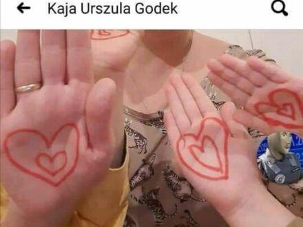 Najtrafniejszy komentarz Kai Godek o Kai Godek