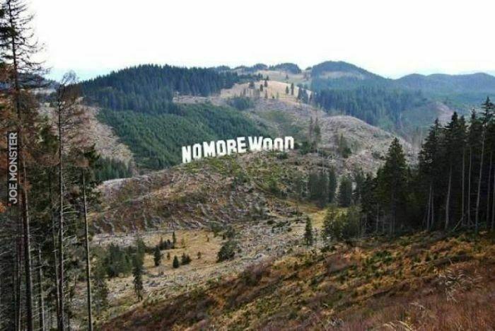 no more wood