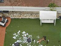 Pies sąsiada widziany z drona
