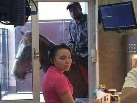 I sałatkę dla konia poprosze