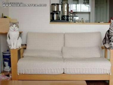 Oryginalne wykończenie sofy
