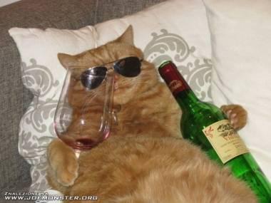 Garfield na wakacjach