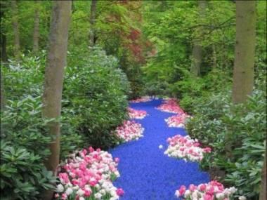 Rzeka kwiatów