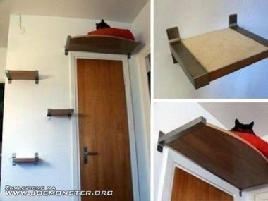 Półka dla kotka