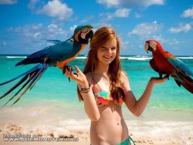Fotka z papużkami