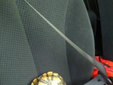 Bezpieczny pasażer