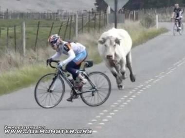 Ride Forrest, ride!