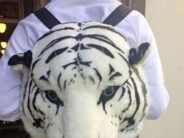 Z tygryskiem do szkoły