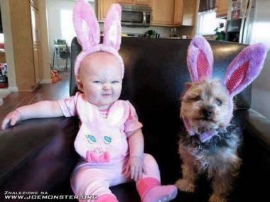 Niepodobają nam się te uszy. Zdejmuj je!