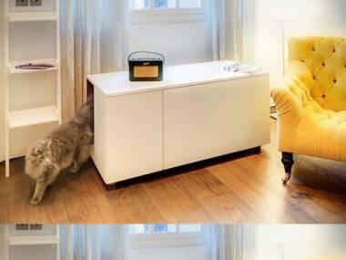 Luksusowa kawalerka dla kota