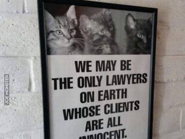 """""""Jesteśmy prawdopodobnie jedynymi prawnikami na ziemi, których klienci są niewinni"""""""