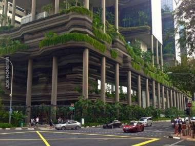 Strefa zieleni w całym budynku
