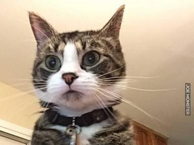Mój komputer robi zdjęcie, gdy ktoś trzykrotnie wpisze złe hasło