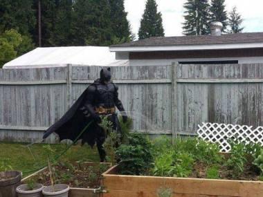 Gdy nie trzeba ratować Gotham
