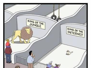 Prawdziwi królowie