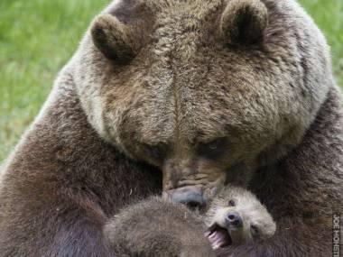 Mamo, puść!