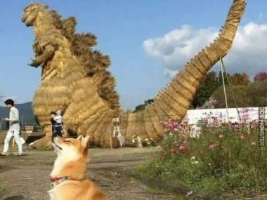 Prawie jak Godzilla