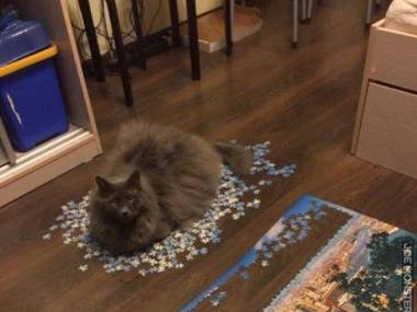Nigdy nie dokończę tych puzzli