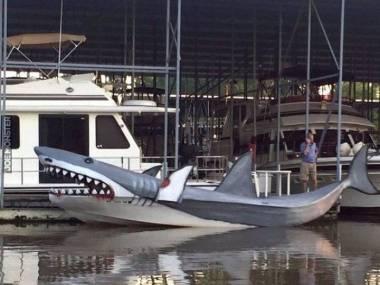 Łowca rekinów