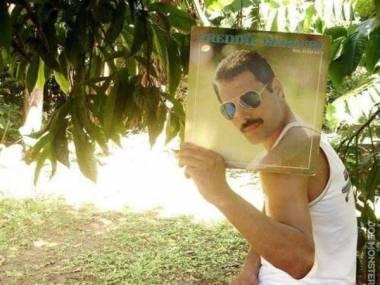 Freddie żyje!