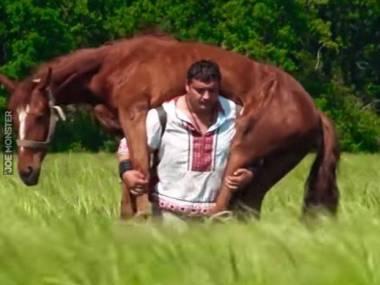 Nosił koń razy kilka