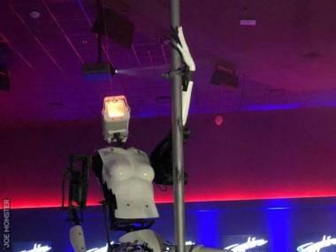 Nie we wszystkim roboty są w stanie zastąpić człowieka
