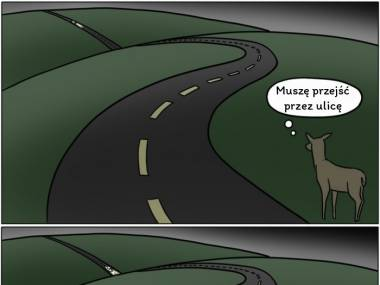 Głupie zwierzaki